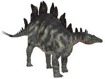 Stegosauro isolato Fotografie Stock