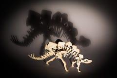 Stegosaurus. Shadow of a big stegosaurus Royalty Free Stock Images