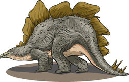 Stegosaurus. Vector drawing of a dinosaur - Stegosaurus Royalty Free Stock Image