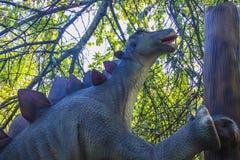 stegosaurus fotos de stock royalty free