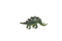 stegosaurus Стоковое Изображение