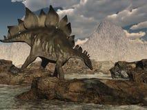Stegosaurus che vaga Fotografia Stock Libera da Diritti