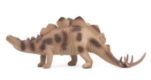 Stegosaurus dinosaur isolated Royalty Free Stock Image
