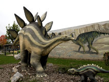 Stegosaurus dinosaur. Model of the dinosaur in its natural size Stock Photography