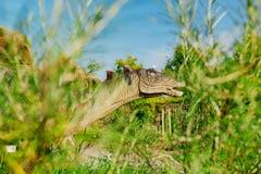 Stegosaurus en Novi Sad Dino Park imagenes de archivo