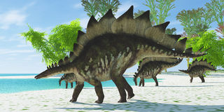 Stegosaurus Lake. A herd of Stegosaurus dinosaurs head down to a lake for a drink in the Jurassic Age Royalty Free Stock Images