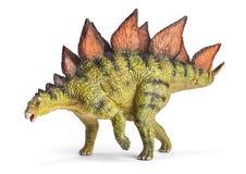 Stegosaurus släkte av den bepansrade dinosaurien Arkivbild