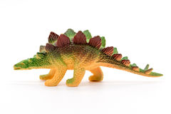 Stegosaurus toy model. On white background Stock Image