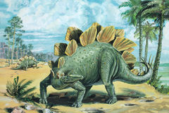Stegosaurus. A vegetarian, armour-plated dinosaur. About 20 ft 6 m long. The thick, spiked tail was used for defence. Late Jurassic, about 140 million years ago Stock Photography