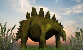 Stegosaurus. Walking on green grass Royalty Free Stock Photo