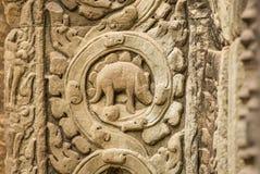 Stegosaurusbasrelief på väggen av templet för Ta Prohm Royaltyfri Bild