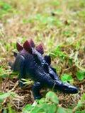 Stegosuraus - toy. Portrait of toy dinosaur Stock Photos