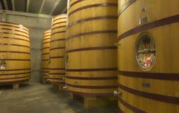 Stehen-oben-ähnliche enorme Bier- oder Weinalternfässer. Stockfoto