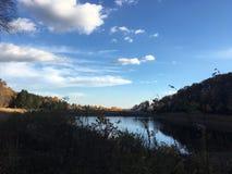 Stehen Sie ein Ufer still stockbilder