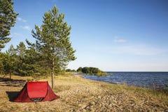 Stehen Sie in einem Zelt in einem Kiefernwald auf dem Ufer des Ladoga Sees still Stockfotografie