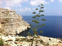 Stehend allein in Malta Stockbild