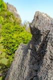 Stehend leeren Sie sich auf einen Bergblick, Leerstelleklippenrand Lizenzfreies Stockbild
