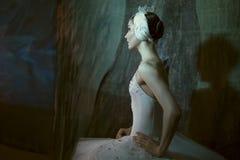 Stehende Bühne hinter dem Vorhang der Ballerina bevor dem Gehen auf Stadium lizenzfreies stockbild