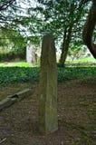 Stehende Steine Megaltihic Ogham in Adare Irland Lizenzfreie Stockfotos