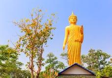 Stehender Buddha auf dem Dach in der Natur Lizenzfreie Stockfotografie