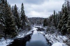 Stehlen Sie blauen den Inter- Nebenfluss und Wald lizenzfreies stockfoto