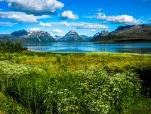 Steigen, меньшая деревня в северной Норвегии Стоковые Изображения