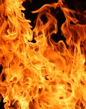 Steigende Flammen Stockfotos