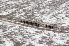 Steigender Aconcagua, Argentinien Lizenzfreies Stockbild