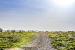 Steigender Schotterweg in der grünen Wiese mit blauem Himmel Lizenzfreies Stockfoto