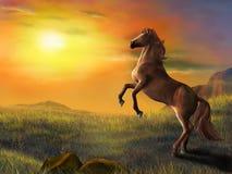 Steigendes Pferd Stockbild