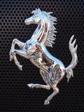Steigerend paard royalty-vrije stock afbeeldingen