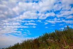 Steigung des grünen Grases und des blauen Himmels mit Wolken Stockbild