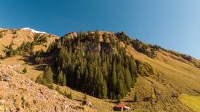 Steile heuvel in voorgrond met herfst verkleurd gras stock afbeelding