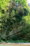 Steile rotsachtige Bank van de bergrivier met groene bomen stock foto's