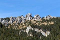 Steile rotsen & x28; Mnichy Chocholowskie& x29; in Chocholowska-Vallei Tatra stock afbeeldingen