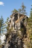 Steile rotsen Mnichy Chocholowskie in Chocholowska-Vallei Tatra stock afbeeldingen