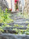 Steile Schritte von Riomaggiore Stockbild