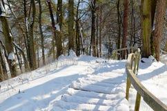 Steiler Hügel des hölzernen schneebedeckten Eichentreppenhaus-Geländers Stockbilder