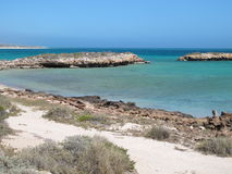 Steiler Punkt, Westernmost Punkt, Haifisch-Bucht, West-Australien lizenzfreies stockbild