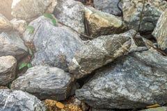 stein Stockfotografie