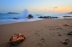 Stein auf dem Strand Stockbilder