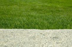 Stein auf einem Hintergrund des Grases Stockbild