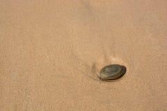 Stein auf einem sandigen Strand Stockfotos