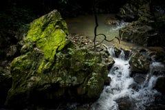 Stein bedeckt mit Moos 2 Lizenzfreie Stockfotografie