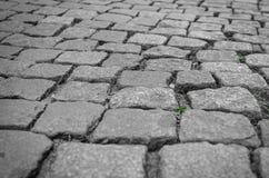 Stein blockiert Nahaufnahme Lizenzfreie Stockbilder