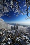 Stein der Seelandschaft mit Schnee und dunkelblauem Himmel und Niederlassungen mit weißem Schnee reimen während des kalten Winter Stockfotos