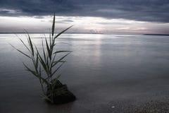 Stein in einem Nebel Lizenzfreie Stockfotografie
