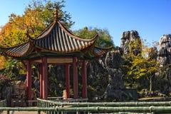 Stein-Forest Pagoda Stockbild