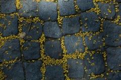 Stein gepflasterte Pflasterung mit Blumen bleibt Stockbilder