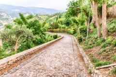 Stein gepflasterte Straße von Natur aus umgeben Stockbilder